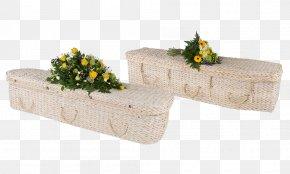 Banana Leaves - Coffin Banana Leaf Natural Burial Plant Stem PNG