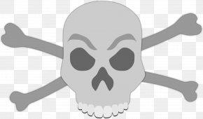 Skull - Human Skull Symbolism Skull And Crossbones PNG