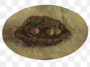 Van Gogh Museum - Van Gogh Museum Basket Of Hyacinth Bulbs National Gallery Of Victoria The Painter Of Sunflowers PNG