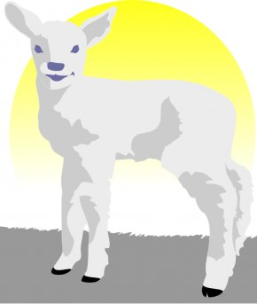 Lamb Image - Sheep Lamb And Mutton Clip Art PNG