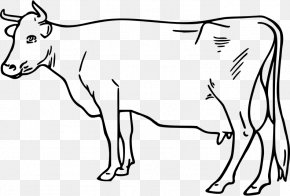 Goat - Ayrshire Cattle Taurine Cattle Goat Drawing Clip Art PNG