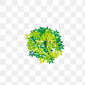 Lush Tree Top - Tree Icon PNG
