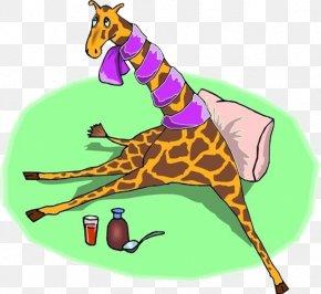 Giraffe On The Grass - Northern Giraffe Animal Dog Clip Art PNG