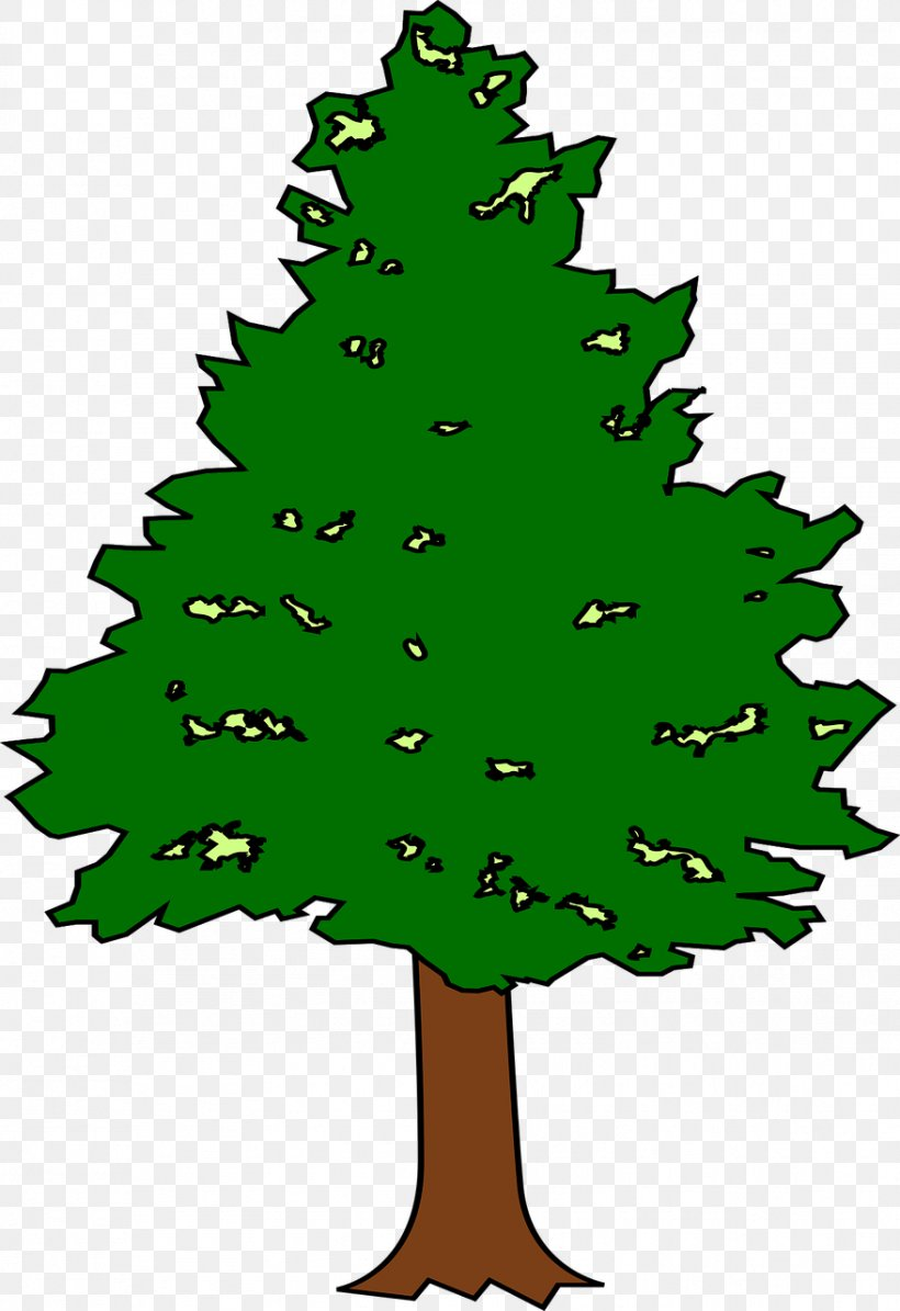 Spruce Fir Leaf Tree Plant, PNG, 878x1280px, Spruce, Branch, Christmas, Christmas Decoration, Christmas Ornament Download Free
