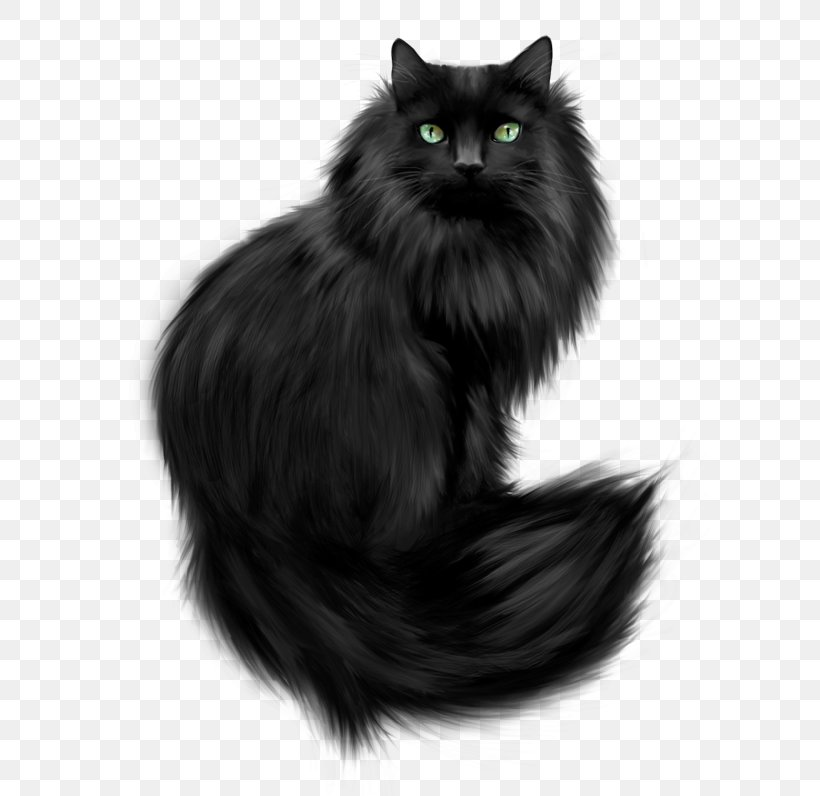 Norwegian Forest Cat Persian Cat Kitten Feral Cat Png