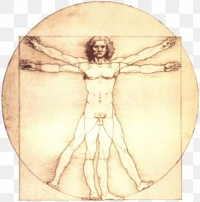 Painting - Vitruvian Man Renaissance Portrait Of A Man In Red Chalk Painting Drawing PNG