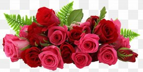 Red And Pink Roses Picture - Rose Flower Clip Art PNG
