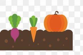 Vegetable Planting Material - Vegetable Fruit PNG