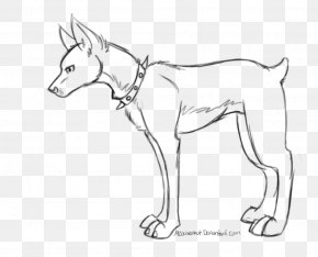 Dog - Dog Breed Line Art Drawing /m/02csf PNG