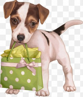 Puppy - Puppy Dog Breed Jack Russell Terrier Clip Art PNG