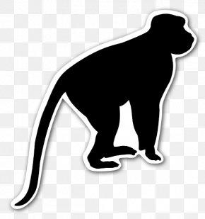 Monkey - Primate Chimpanzee Monkey Ape Silhouette PNG