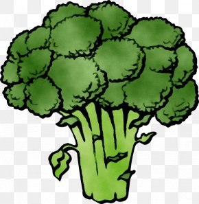 Broccoli Clip Art Cauliflower Vegetable PNG