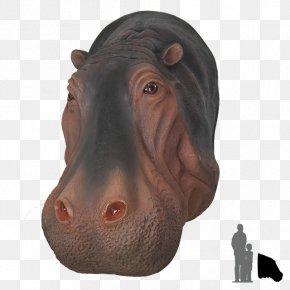 Hippo - Hippopotamus Pig Rhinoceros Animal Dog PNG