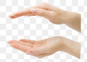Hands Up And Down Relative - Hand Finger Digit PNG