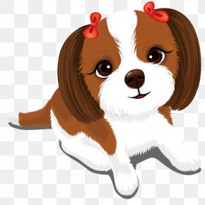 Vector Cute Puppy - Cavalier King Charles Spaniel Puppy Cuteness Kitten PNG