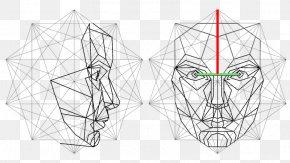 Anatomy Human Face Graphic - Golden Ratio Face Vitruvian Man Mathematics PNG