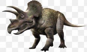 Dinosaur - Torosaurus Triceratops Gorgosaurus Pachyrhinosaurus Styracosaurus PNG