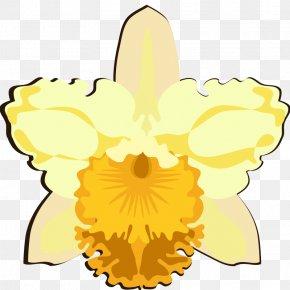 Flower - Floral Design Clip Art Petal Cut Flowers PNG