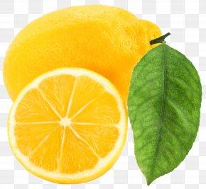 Large Lemon Clipart - Lemon Clip Art PNG