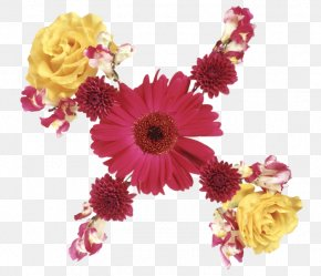Mothers Day Flowers Download - Transvaal Daisy Floral Design Cut Flowers Flower Bouquet PNG