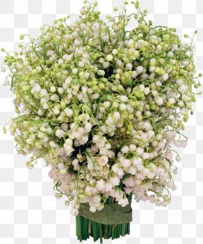 Lily Of The Valley - Lily Of The Valley Photography Flower Clip Art PNG