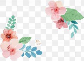 Pink Sakura Header Box - Pink PNG