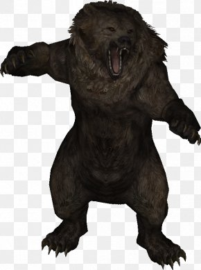 Bear - The Elder Scrolls V: Skyrim Oblivion The Elder Scrolls III: Morrowind Bear PNG