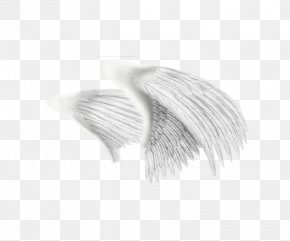 White Painted Wings Creative - White Black Pattern PNG