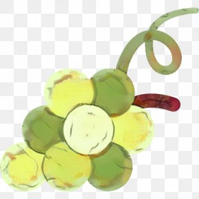 Seedless Fruit Plant - Grape Cartoon PNG