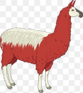 South America Cliparts - Llama Alpaca Free Content Clip Art PNG