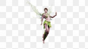 The Archaize - Paragon Fairy Heroes Of The Storm Video Game Character PNG