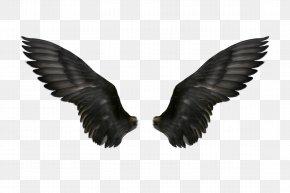 Black Wings - Clip Art PNG