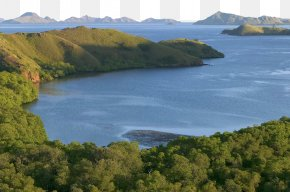 Komodo National Park Scenery - Komodo Rinca Beijing World Park National Park PNG