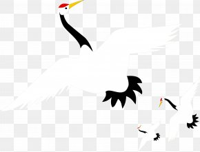 Vector Crane - Red-crowned Crane Euclidean Vector PNG