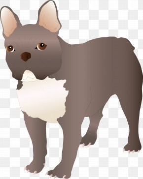 Dog - French Bulldog Puppy Dog Breed Non-sporting Group PNG