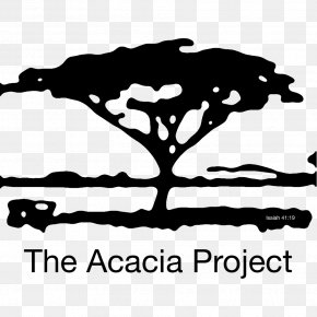 Acacia - Silhouette Tree Logo Art Painting PNG
