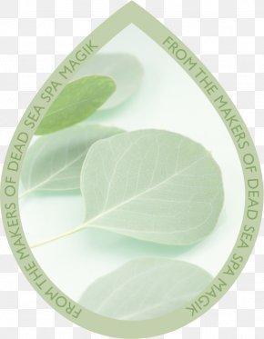Creative Green Drops - Green Leaf Gum Trees Tableware PNG