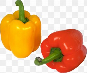 Pepper Image - Bell Pepper Chili Pepper Cayenne Pepper PNG