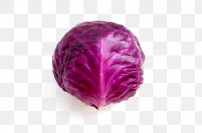 Purple Cabbage - Red Cabbage Broccoli Cauliflower Brussels Sprout PNG