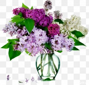 Lilac Flower - Common Lilac Flower Bouquet Rose PNG