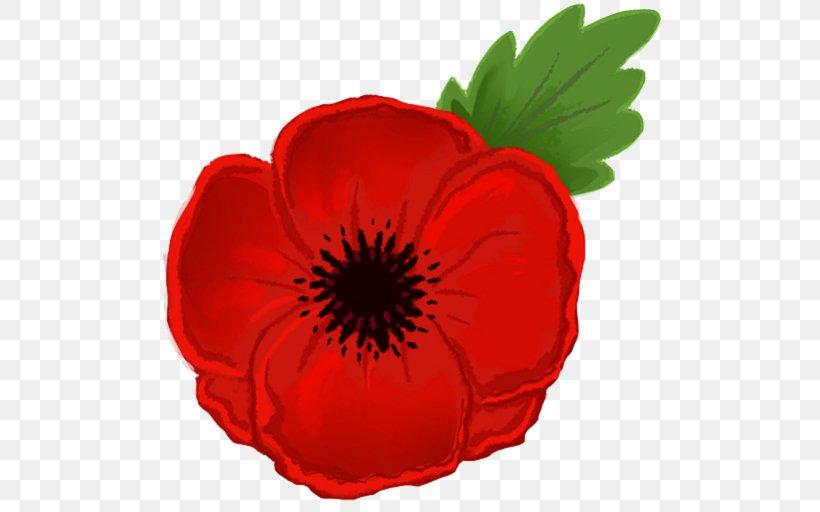 Remembrance Poppy Armistice Day Clip Art Png 512x512px Poppy Anzac Day Armistice Day Bud California Poppy