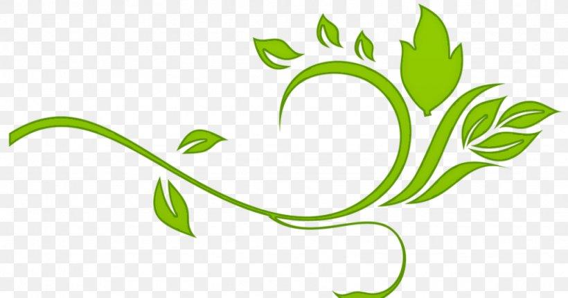 Leaf Green Plant Flower Herbal, PNG, 1024x538px, Leaf, Flower, Grass, Green, Herbal Download Free