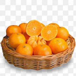 Orange - Orange Gift Basket Fruit PNG