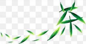 Tea Green Tea Free Downloads - Tea Typeface PNG