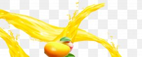 Mango Juice,Mango - Diet Food Vegetable Natural Foods Yellow PNG