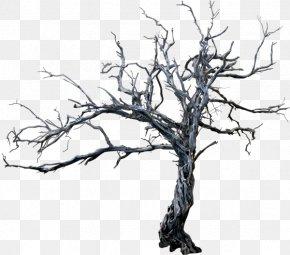 Tree - Tree Branch Trunk Clip Art PNG