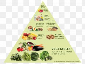 Healthy Balanced Diet - Eat To Live: The Revolutionary Formula For Fast And Sustained Weight Loss Nutrient Nutritarian Food Pyramid PNG