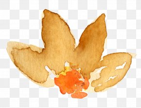 Watercolor Leaves - Watercolor Painting Autumn Clip Art PNG