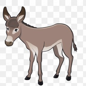 Vector A Donkey - Cattle Goat Livestock Cartoon PNG