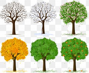Spring Tree - Tree Silhouette Clip Art PNG